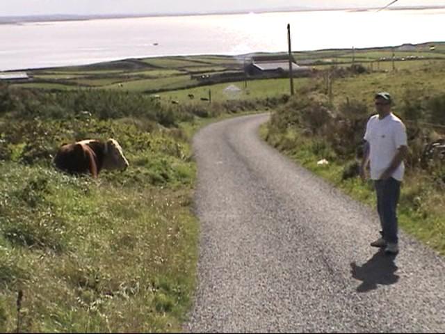 Marky & Bull